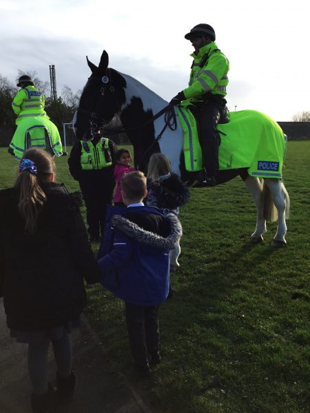We met the police horses and learnt lots about them