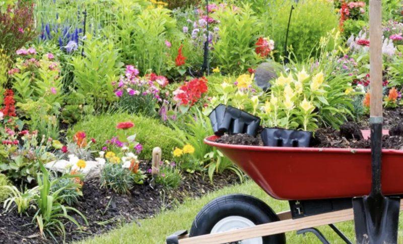 It's Gardening time!